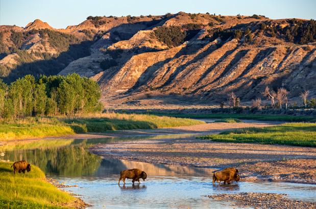 Bike Insurance Online >> Black Hills – South Dakota | Guided Tours | Adventure Cycling Association