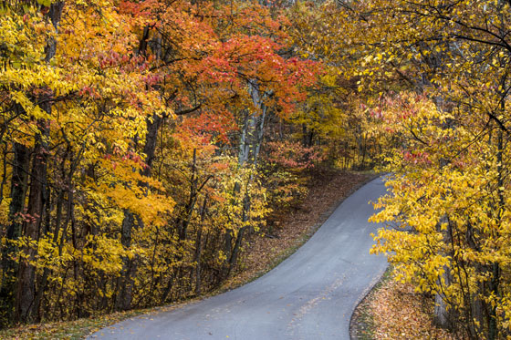 If you like the look of this road, southern Indiana is calling.