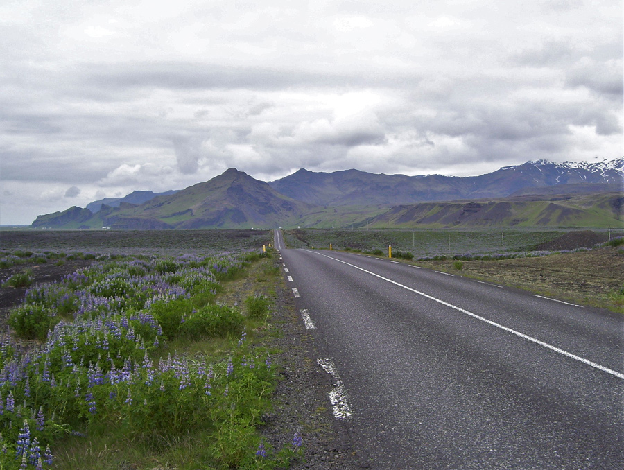 Iceland road by Laura Killinbgack