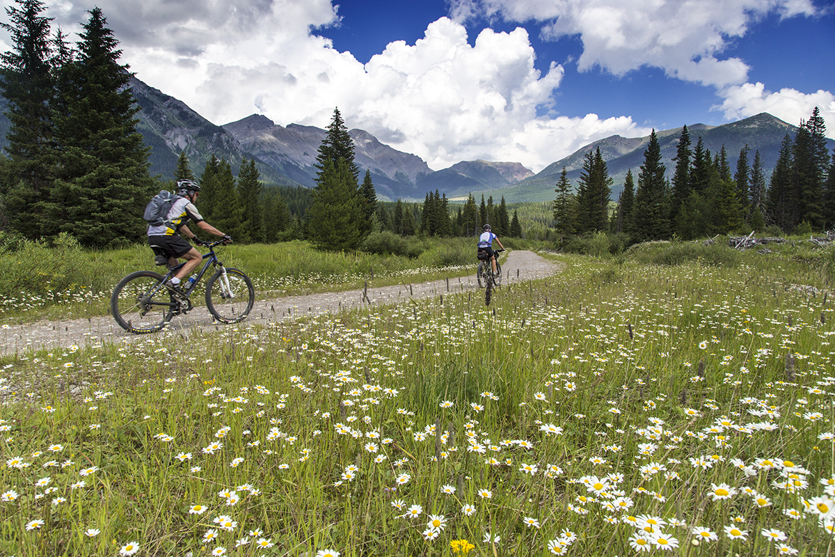 Bike touring through the Canadian section of the Great Divide.