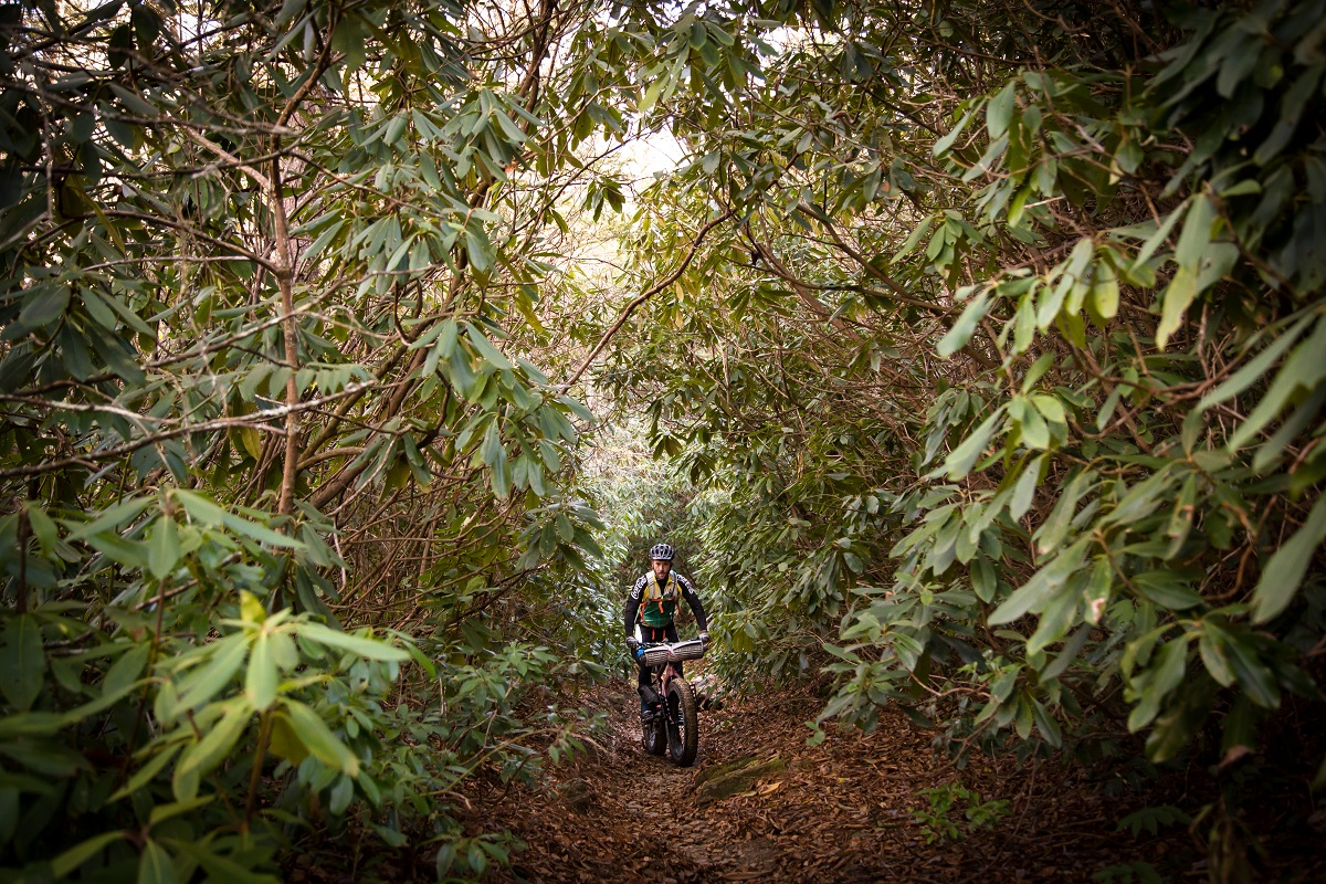 Riding a fat bike through the forest by Cole Fetters