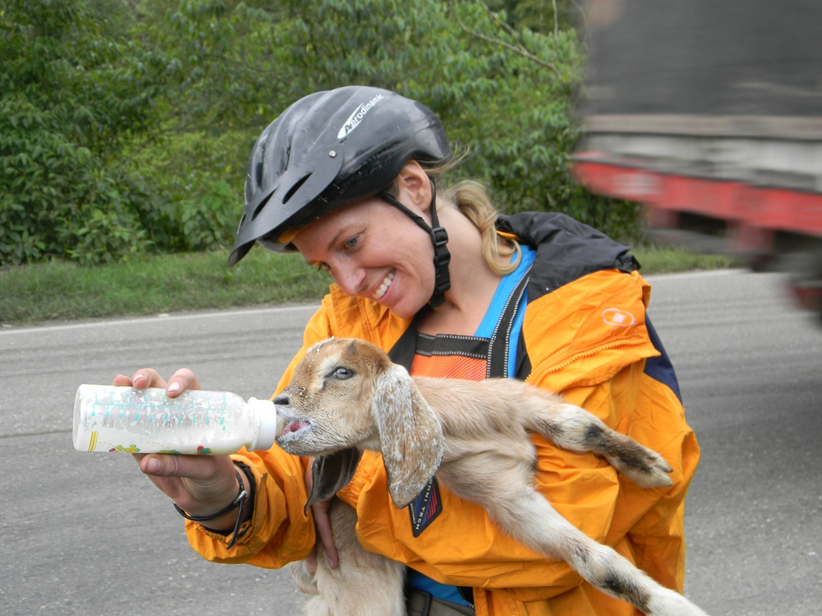 Laura feeds a baby goat from a bottle on a roadside in Colombia.