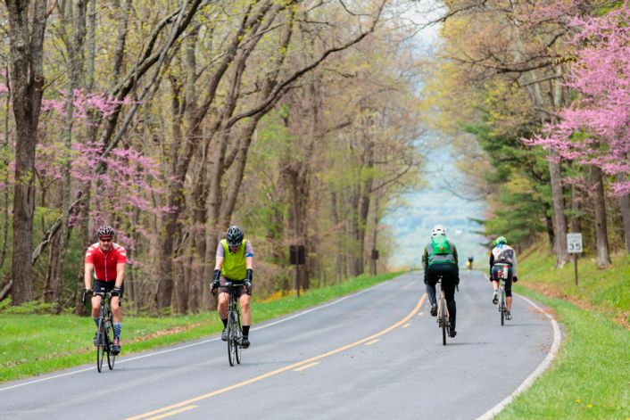Bike travel in National Parks: Skyline Drive is quieter than usual for Ride the Drive, Shenandoah's 1st car-free day.