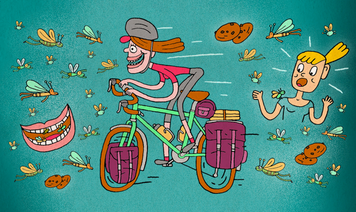 Of Bugs & Bicycles | Adventure Cycling Association