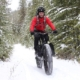2016 Fat Bike Buyers Guide
