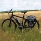 The Dark Side: Why Would a Veteran Cyclist and Tour Leader Ride an eBike?